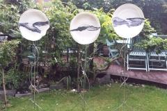 Garden DIscs